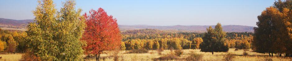 Jeseň v CV Lešť